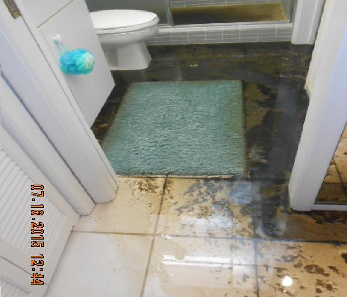 Sewage Seepage Inside condo Unit in Sarasota, FL  Before