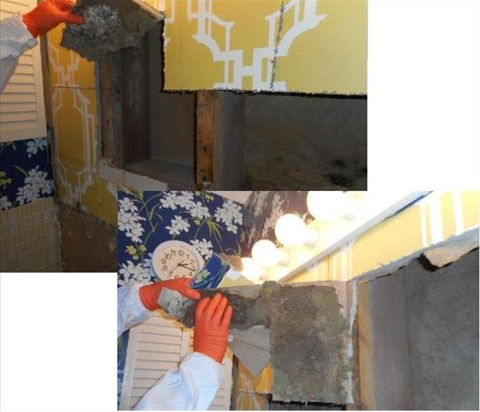 Mold Remediation What's In Your Walls