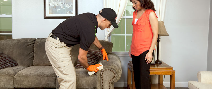 Sarasota, FL carpet upholstery cleaning